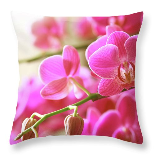 Environmental Conservation Throw Pillow featuring the photograph Blooming Pink Orchid On A Green Branch by Dreaming2004