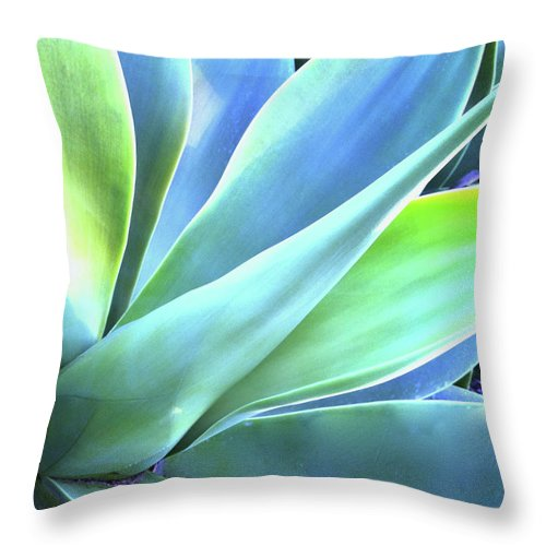 Agave Throw Pillow featuring the photograph Blue Agave by Denise Taylor