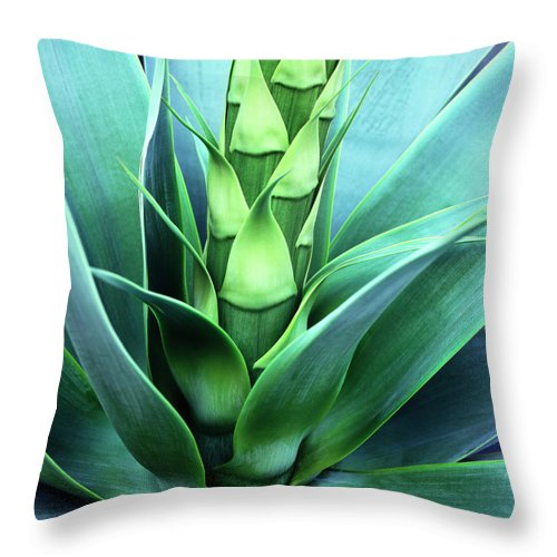 Agave Throw Pillow featuring the photograph Blue Agave by Oleg Moiseyenko