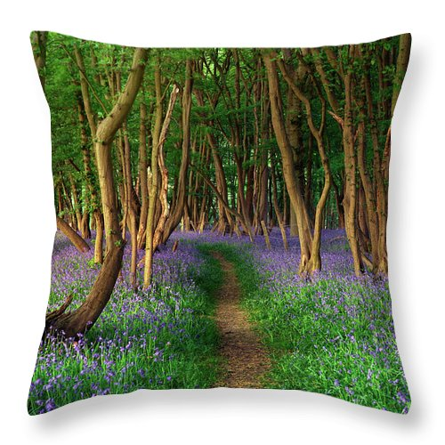 Tranquility Throw Pillow featuring the photograph Bluebells In Sussex by Photography By Sam C Moore