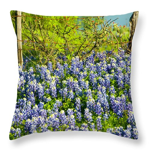 Season Throw Pillow featuring the photograph Bluebonnets, Texas by Donovan Reese