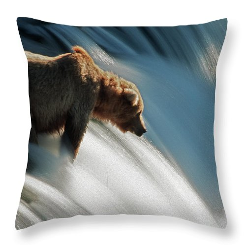 Poetry- Literature Throw Pillow featuring the photograph Brown Bear At Brooks Falls by Mark Newman
