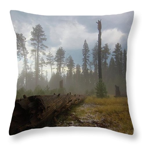 Burnt Throw Pillow featuring the photograph Burned Trees At Lassen Volcanic by Victor De Souza