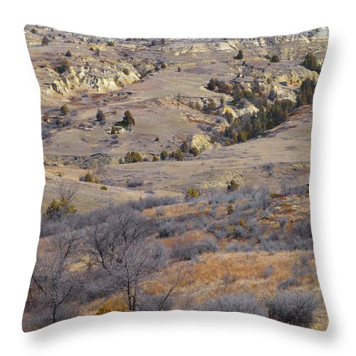 North Dakota Throw Pillow featuring the photograph Burning Coal Vein April Reverie by Cris Fulton