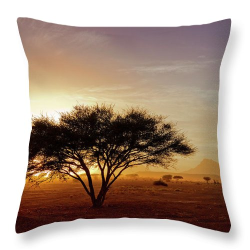 Tranquility Throw Pillow featuring the photograph Burning Desert by Bernd Schunack