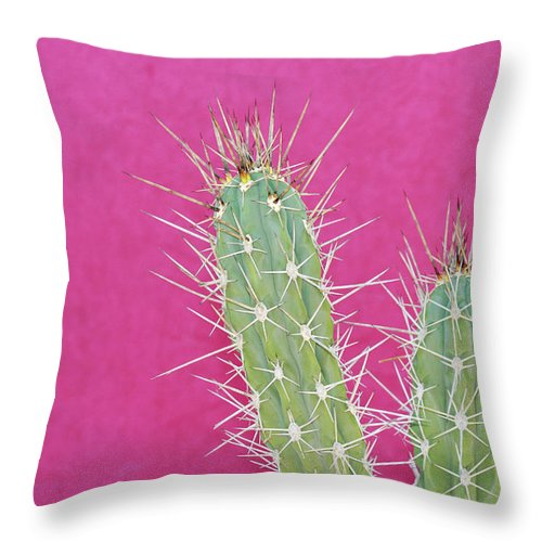 California Throw Pillow featuring the photograph Cactus Against A Bright Pink Wall by Tracy A. Flaming