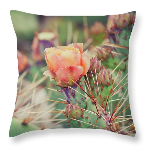 Orange Color Throw Pillow featuring the photograph Cactus Blossom by Harpazo hope