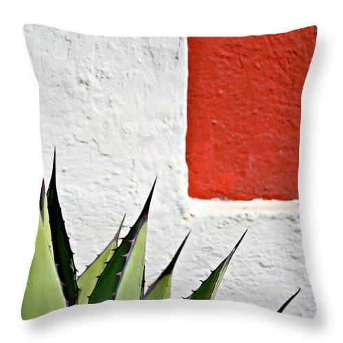 Latin America Throw Pillow featuring the photograph Cactus by Mario A. De Leo Winkler (accrama)