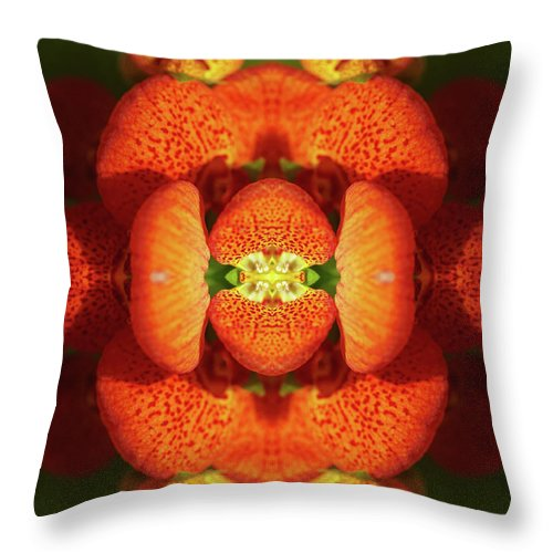 Tranquility Throw Pillow featuring the photograph Calceolaria Flower by Silvia Otte