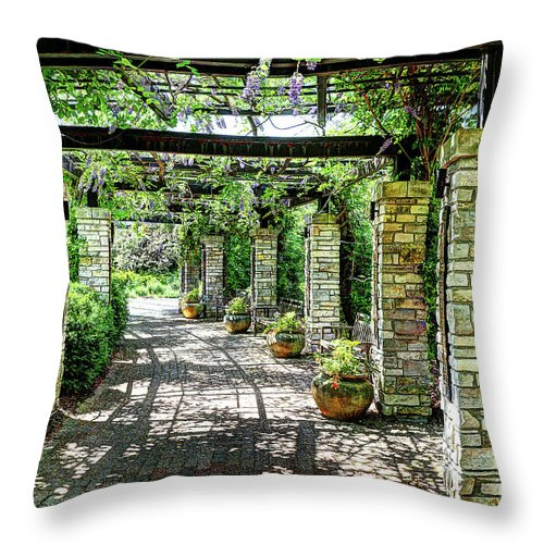 Travel Throw Pillow featuring the photograph Casual Stroll by Deborah Klubertanz