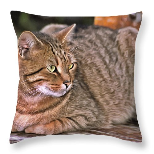 Cat; Cats; Feline; Tabby; Animal; Sit; Sitting; Rest; Resting; Free; Alone; Stray; Greece; Hellas; Greek; Hellenic; Athens; National; Garden; City; Bench; Attika; Attiki; Holidays; Vacation; Travel; Yellow; Eyes; Paint; Paints; Painting; Paintings; Island Throw Pillow featuring the painting Cat On Bench II by George Atsametakis