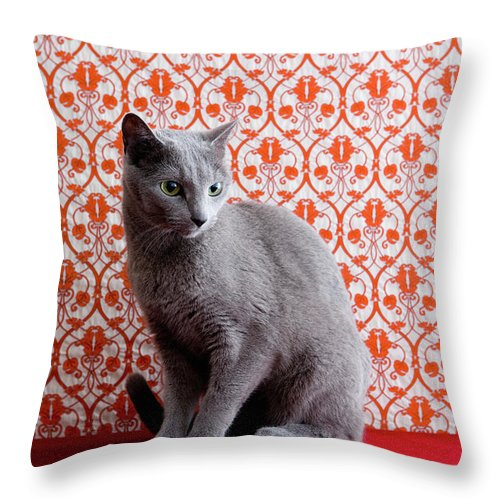 Pets Throw Pillow featuring the photograph Cat Russian Blue And Wallpaper by Ultra.f