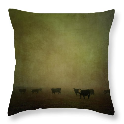 Pets Throw Pillow featuring the photograph Cattle In The Mist by Jill Ferry