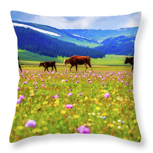 Tranquility Throw Pillow featuring the photograph Cattle Walking In Grassland by Feng Wei Photography