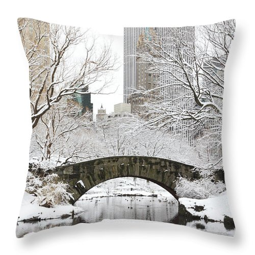 Snow Throw Pillow featuring the photograph Central Park, New York by Veni