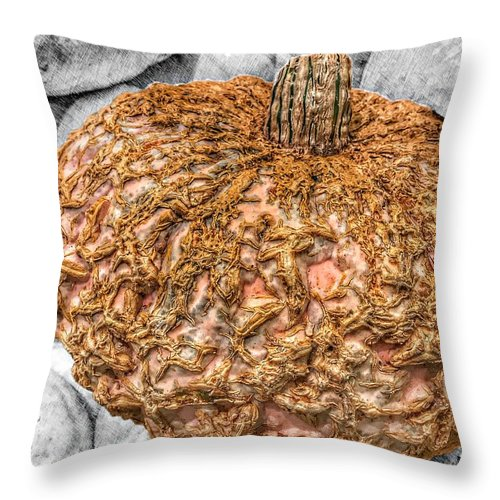 Cinderella Throw Pillow featuring the photograph Cinderella's Gold Lace Pumpkin by Marianna Mills