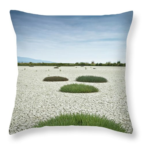 Grass Throw Pillow featuring the photograph Clumps Of Grass Growing Through Cracked by David Duchemin / Design Pics
