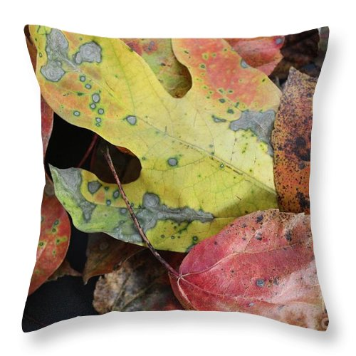 Leaf Throw Pillow featuring the photograph Collective Autumn Color by Anne Ditmars