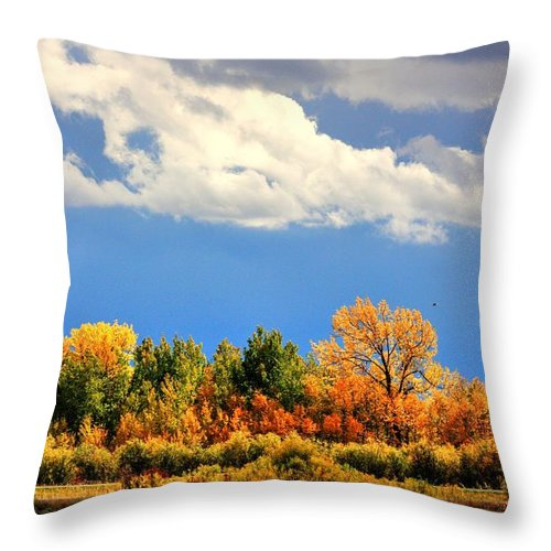 Autumn Fall Colours Colors Winter Red Yellow Red Orange Blue Harvest Evening The End Over This Before Winter Awakening Fall Colours Fall Color Summers End Throw Pillow featuring the photograph Colour Time by David Matthews