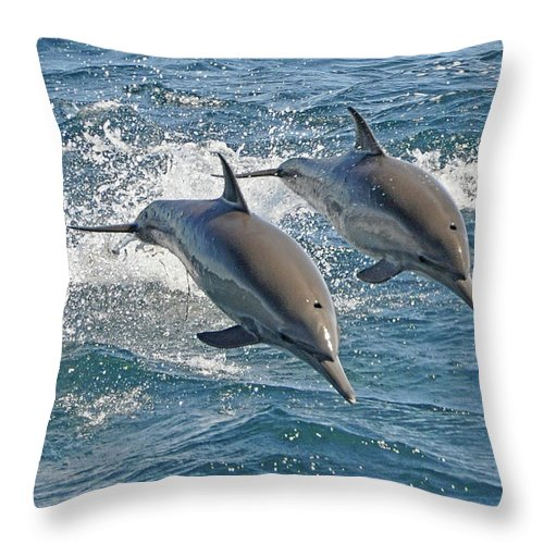 Diving Into Water Throw Pillow featuring the photograph Common Dolphins Leaping by Tim Melling