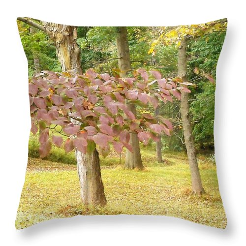 Fall Throw Pillow featuring the photograph Copper Tones by Allison Kelly