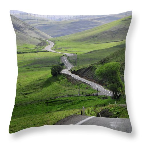 Scenics Throw Pillow featuring the photograph Country Road Through Green Hills by Mitch Diamond