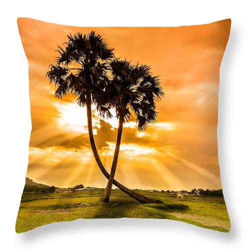 Love Throw Pillow featuring the photograph Couple by Lam Loi