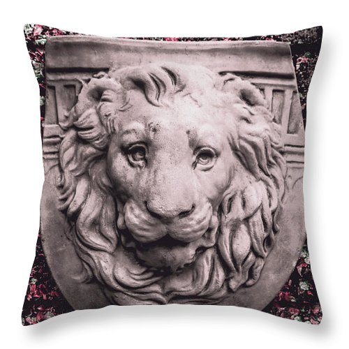 Courtyard Throw Pillow featuring the photograph Courage Crest by Jorgo Photography - Wall Art Gallery