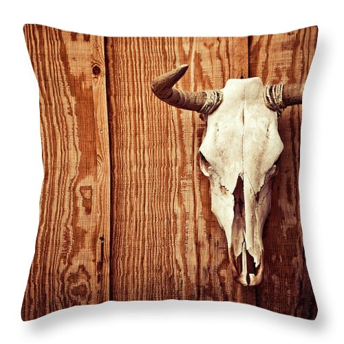 Animal Skull Throw Pillow featuring the photograph Cow Skull by Thepalmer