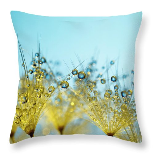 Yellow Throw Pillow featuring the photograph Dandelion And Dew - Gold Abstract Macro by Thomasvogel