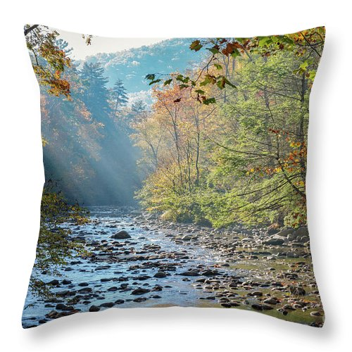 Elkmont Throw Pillow featuring the photograph Dawn At Metcalf Bottoms by Doug Sturgess