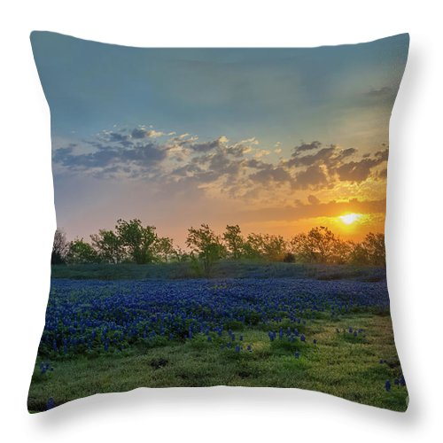 Bluebonnets Throw Pillow featuring the photograph Daybreak In The Land Of Bluebonnets by Mark Alder