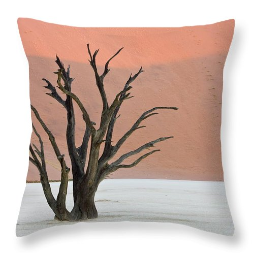 Scenics Throw Pillow featuring the photograph Dead Vlei Sossusvlei Africa Namibia by Thorsten Milse / Robertharding