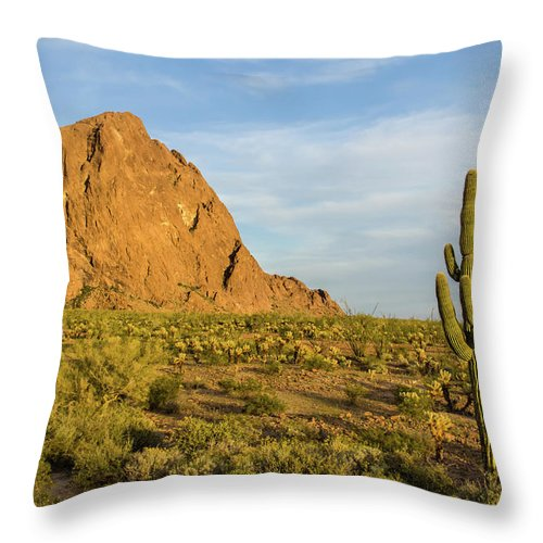 Geology Throw Pillow featuring the photograph Desert Mountain Cactus Classic by Photo By Chris Lemmen Www.chrislemmenphotography.ca