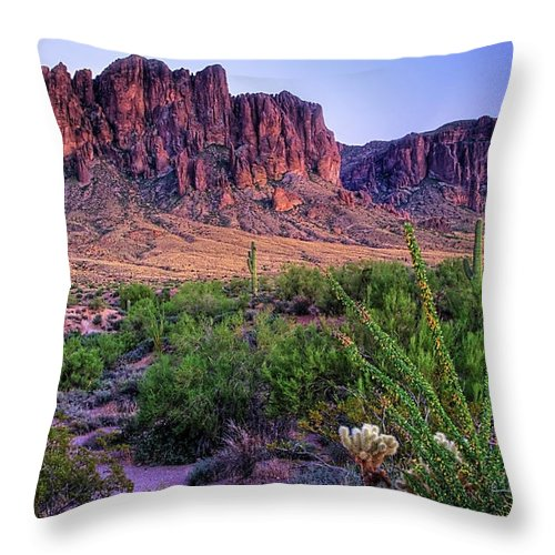 Tranquility Throw Pillow featuring the photograph Desert Trail by Patti Sullivan Schmidt