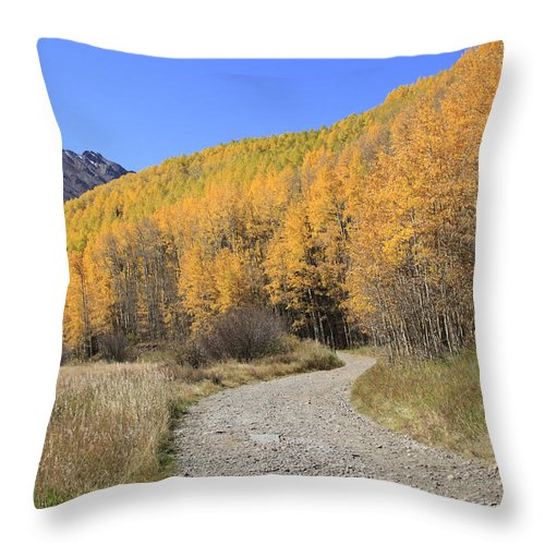 Scenics Throw Pillow featuring the photograph Dirt Road In The Elk Mountains, Colorado by John Kieffer