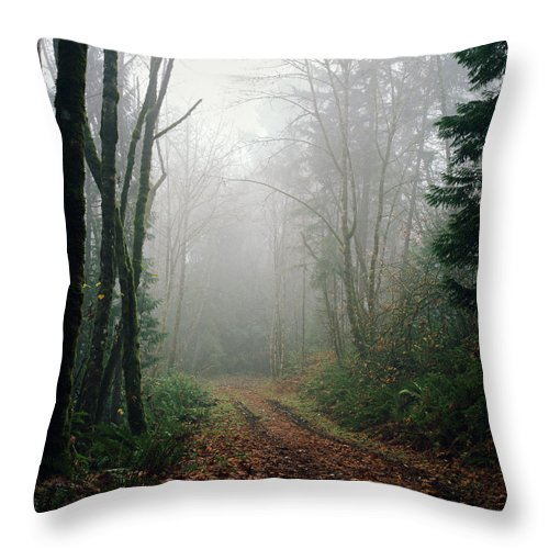 Tranquility Throw Pillow featuring the photograph Dirt Road Leading Through Foggy Forest by Danielle D. Hughson