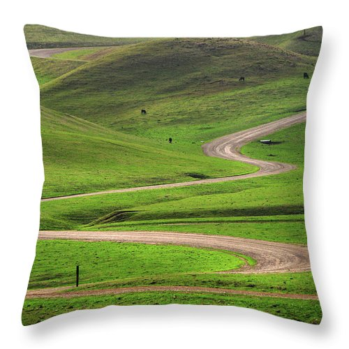 Tranquility Throw Pillow featuring the photograph Dirt Road Through Green Hills by Mitch Diamond