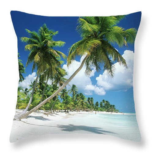 Scenics Throw Pillow featuring the photograph Dominican Republic, Saona Island, Palm by Stefano Stefani