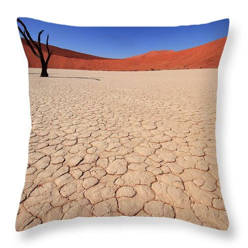 Scenics Throw Pillow featuring the photograph Dry Pan Of Deadvlei Plus Two Dead Trees by Klaus Brandstaetter