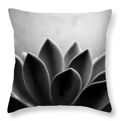 Petal Throw Pillow featuring the photograph Echeveria Setosa by Travis Payne