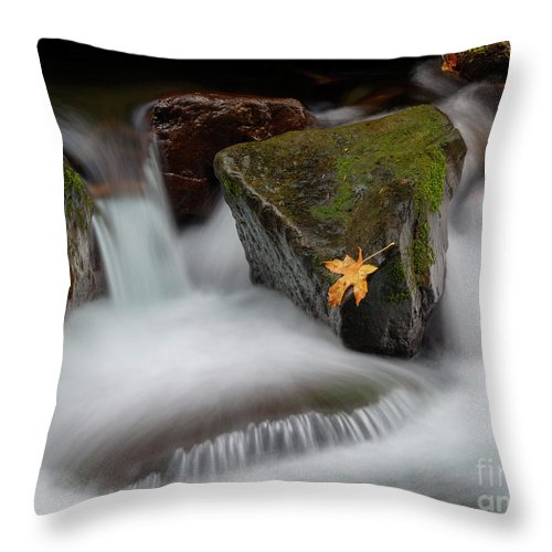 Cascades Throw Pillow featuring the photograph Edge Of The Torrent by Mike Dawson