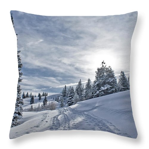 Shadow Throw Pillow featuring the photograph Escape From Beaver Creek by Rauch Jonathan Photographies