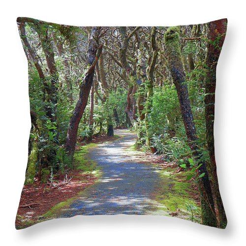 Escape Into The Beautiful Forest The Beauty Of Oregon Throw Pillow For Sale By Art Sandi