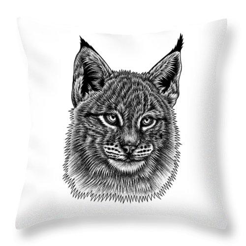 Lynx Throw Pillow featuring the drawing Eurasian Lynx kitten by Loren Dowding