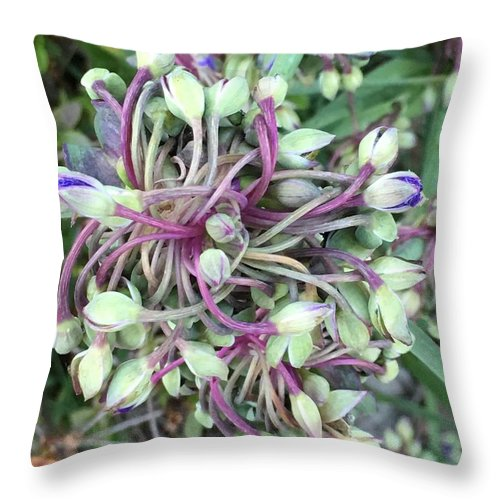 Throw Pillow featuring the photograph Exactly by Gewanda Parker