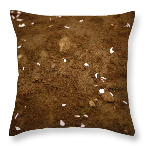 Outdoors Throw Pillow featuring the photograph Fallen Apple Blossoms On Mound Of Soil by Matt Niebuhr