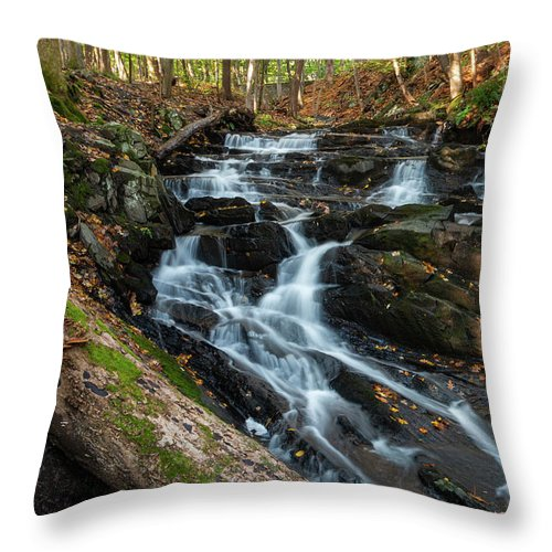 Waterfall Throw Pillow featuring the photograph Falling Waters In October by Jeff Severson