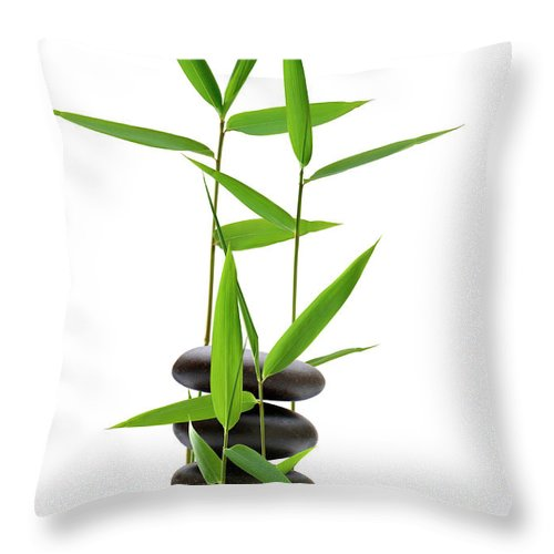 Bamboo Throw Pillow featuring the photograph Feng Shui Bamboo by Pixhook