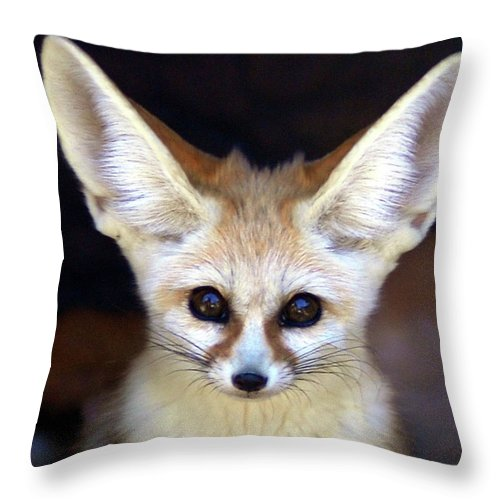 Alertness Throw Pillow featuring the photograph Fennec Fox by Floridapfe From S.korea Kim In Cherl